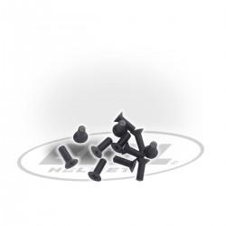 BELL ACCESSORIES - INSERT MINI SCREW KIT (V10)